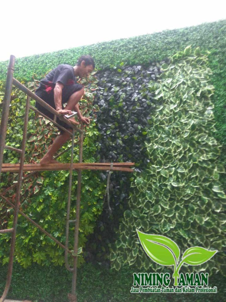 jasa Pembuatan Vertikal Garden