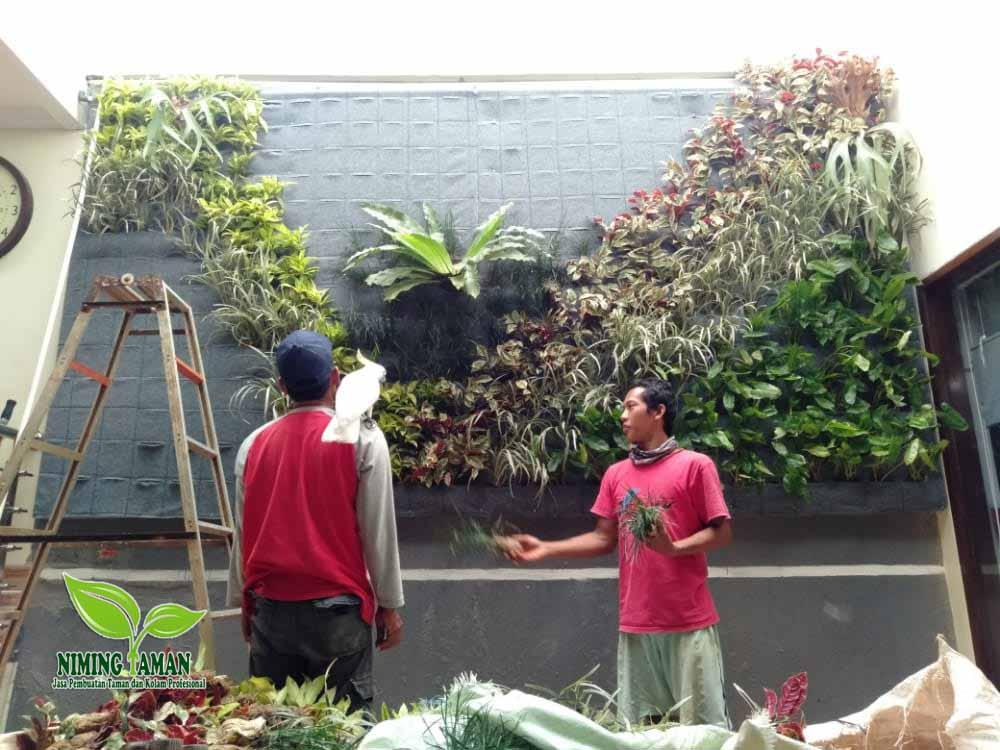 Jasa Tukang Taman di wilayah bandung
