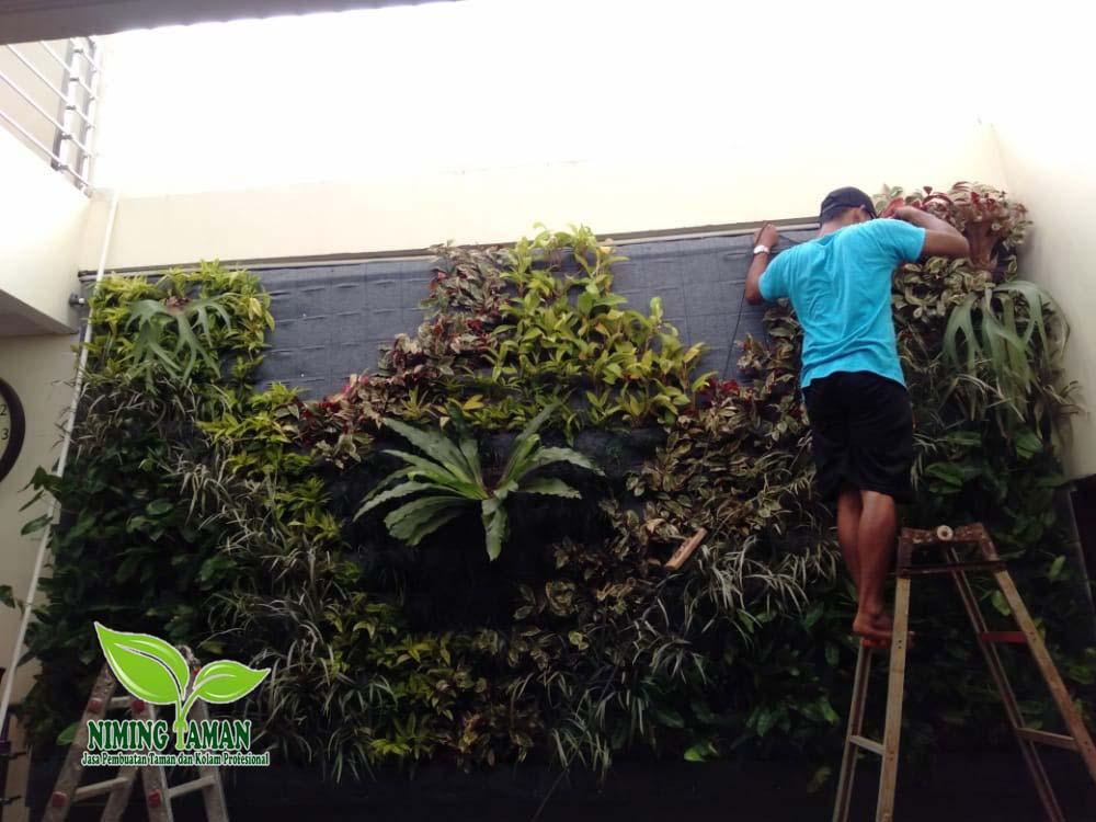 Tukang taman Bandung copy